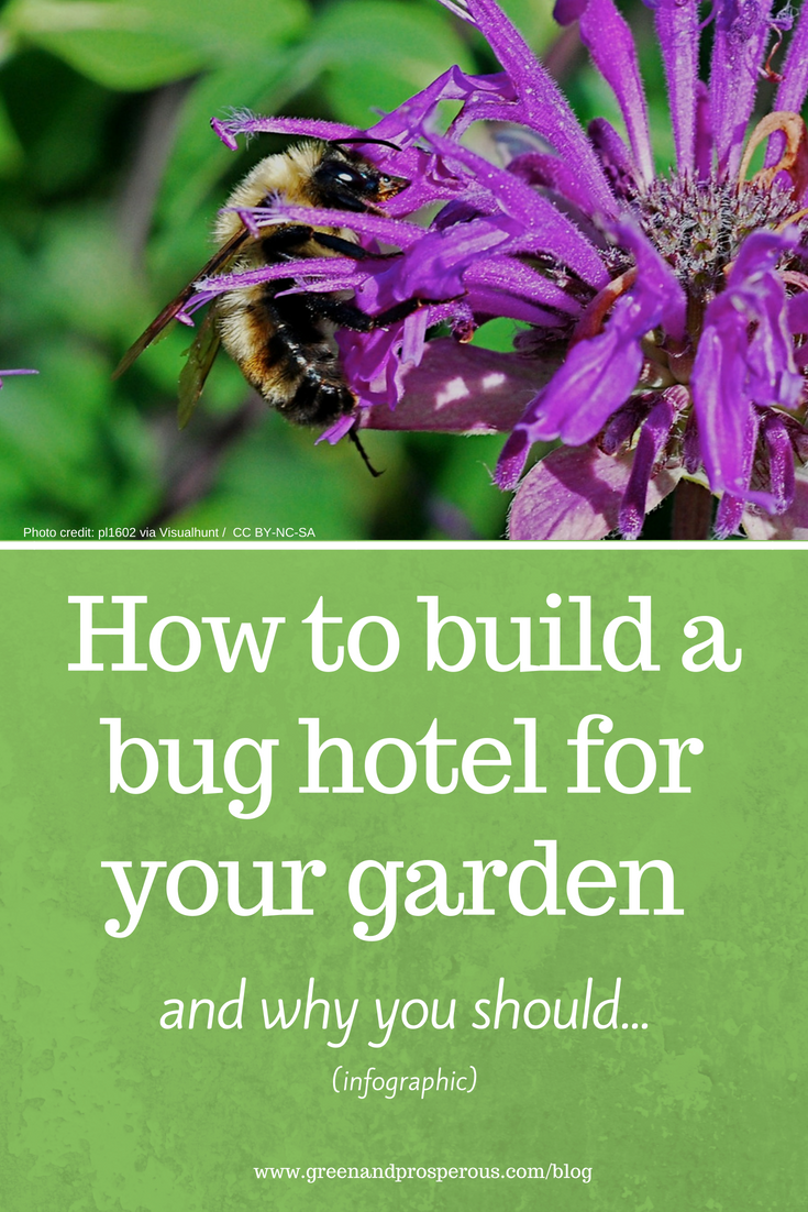 build a bug hotel for your garden