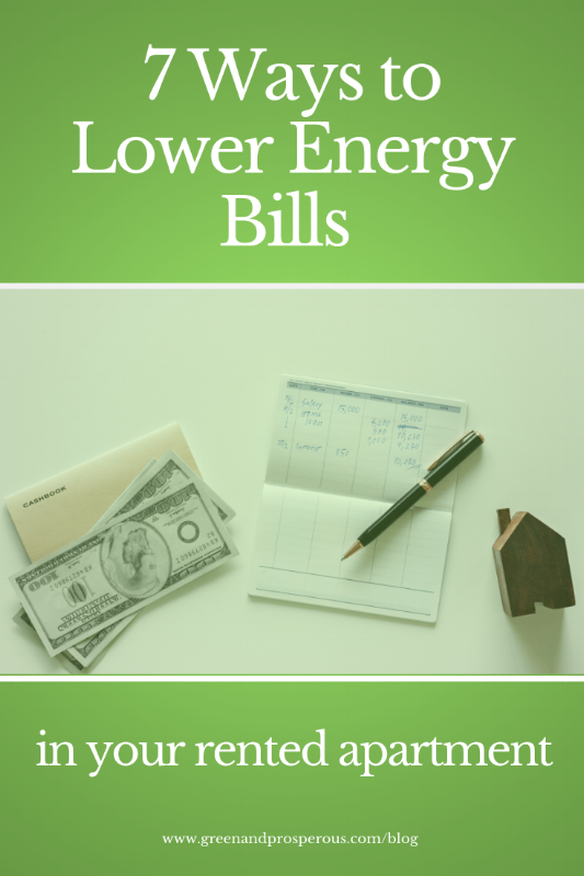 7 Ways to Lower Energy Bills in Your Rented Apartment