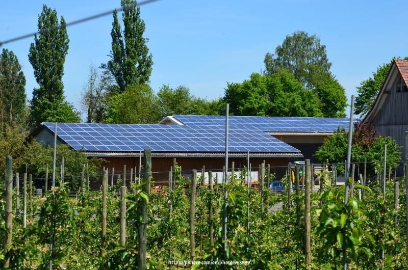 green home activities to increase your property value