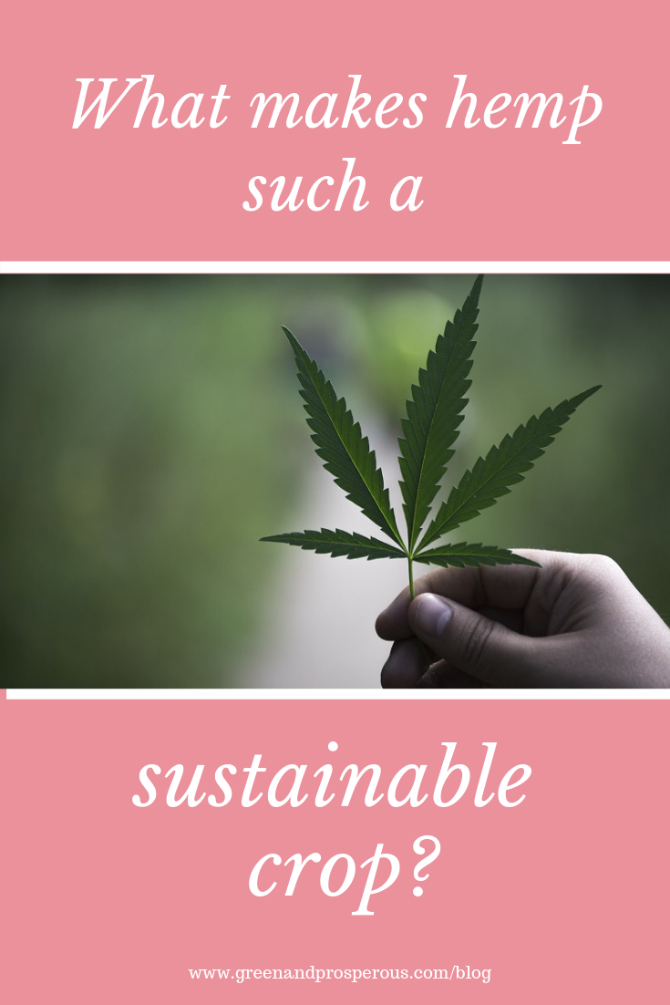 What makes hemp such a sustainable crop.png