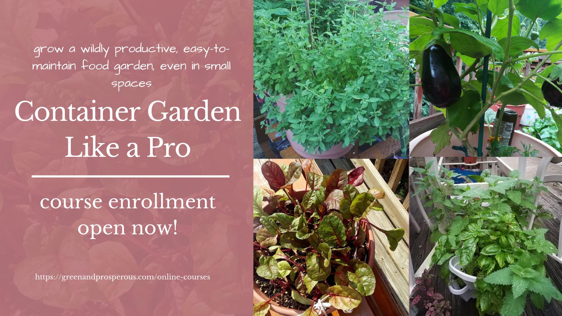 online gardening course