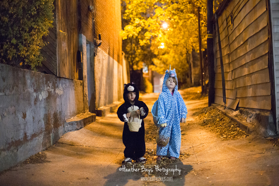 November 1st   Adventures of Pegasus & Cat {trick or treating event session}