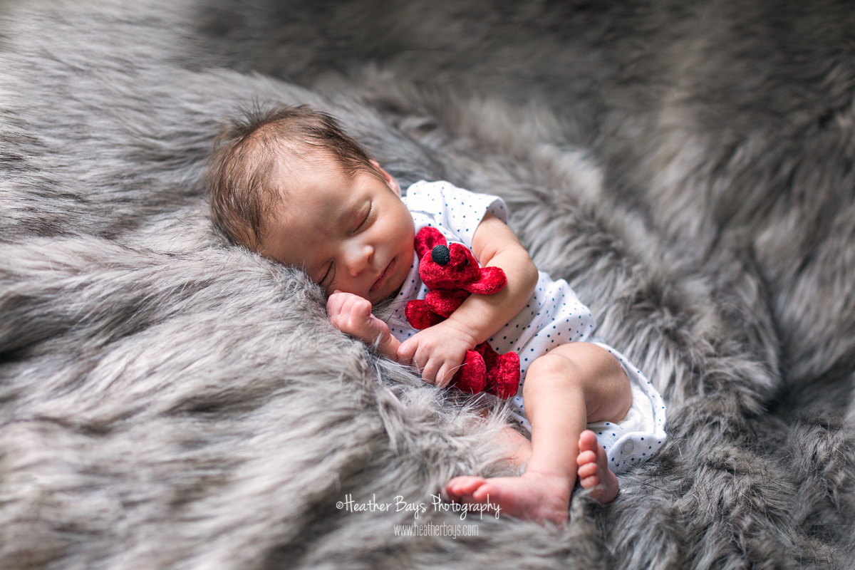 February 16th  Gabriela, 10 Days Old (in-home newborn lifestyle portrait session)