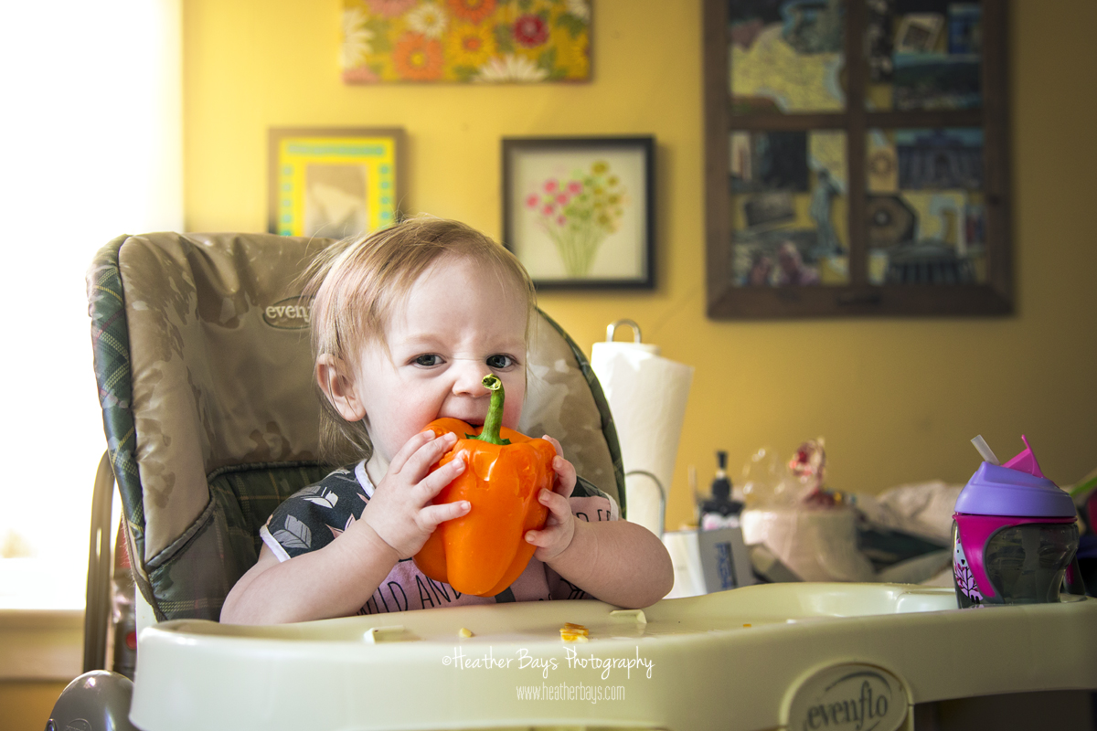 toddler lunch orange pepper