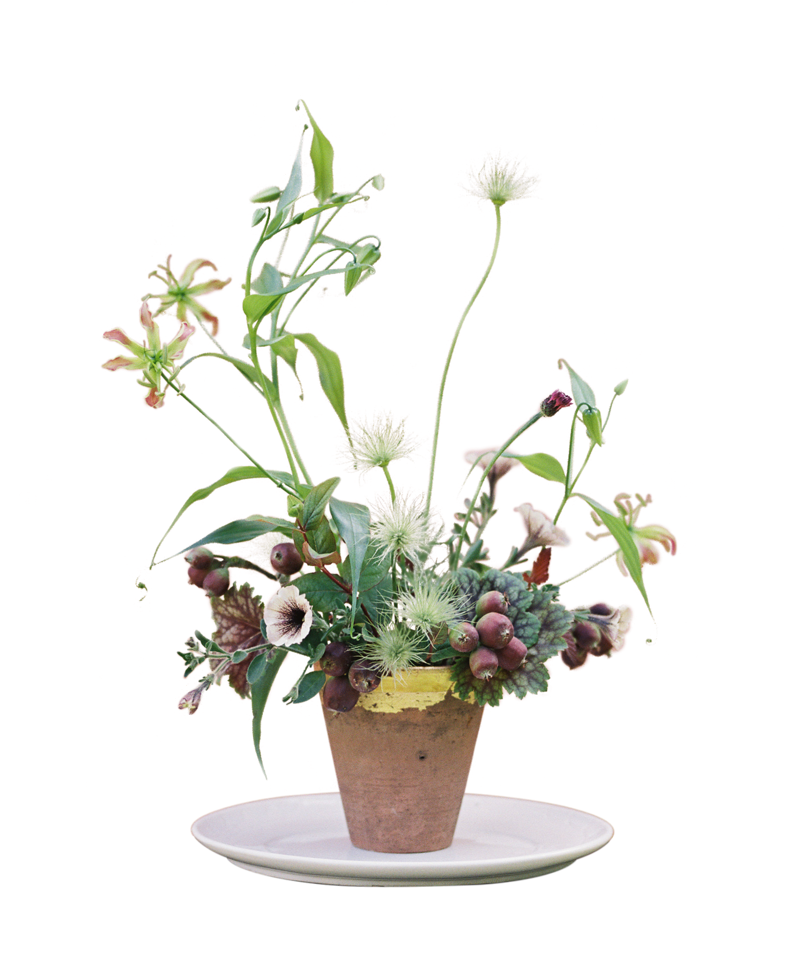 flowers_and_white_plate2.png