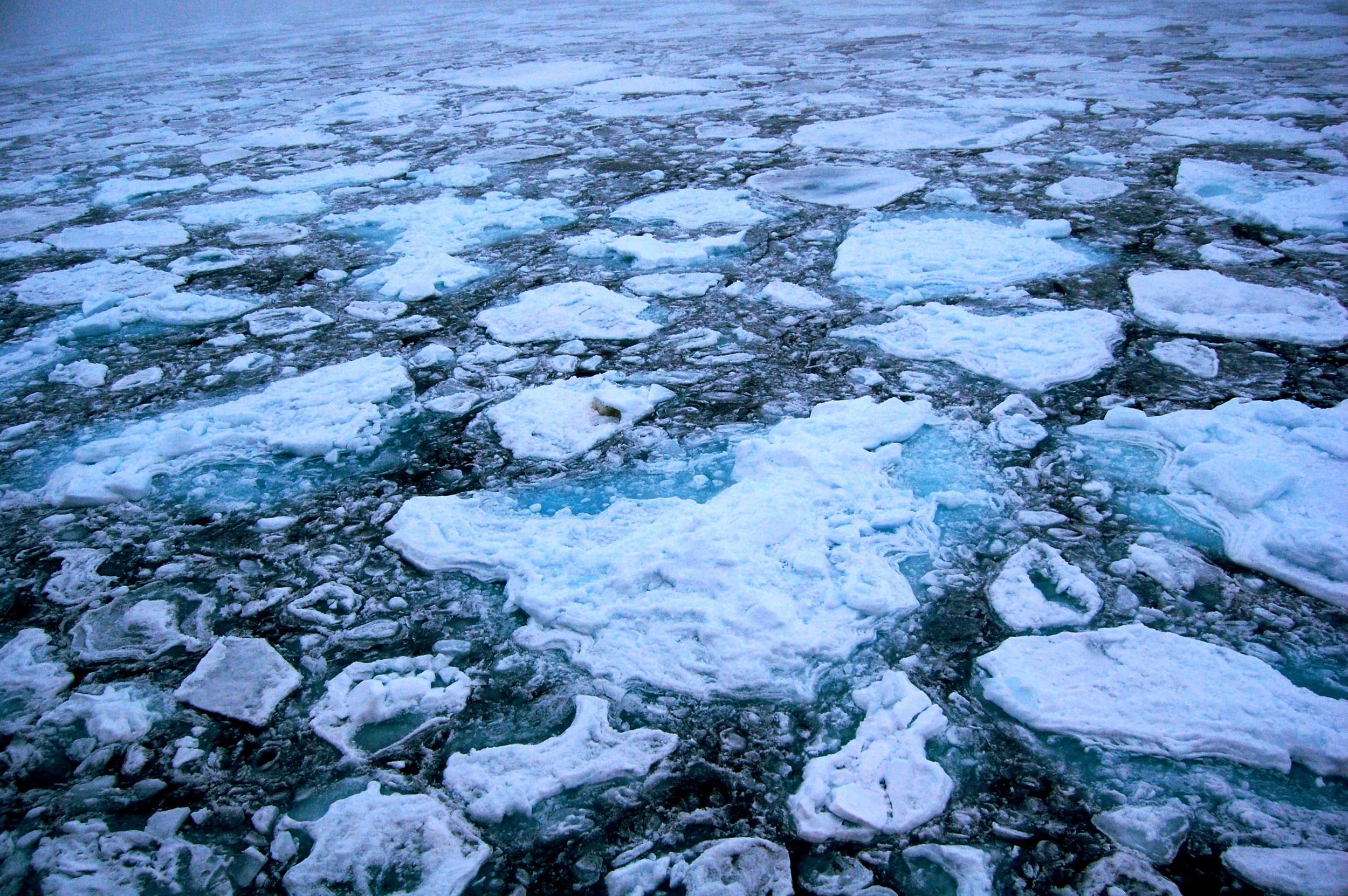 Arctic_Ice.JPG