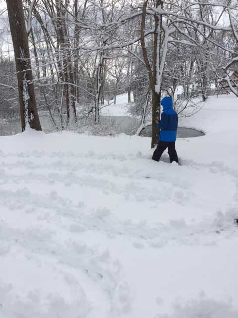 sibel_ozer_snow_photo.JPG