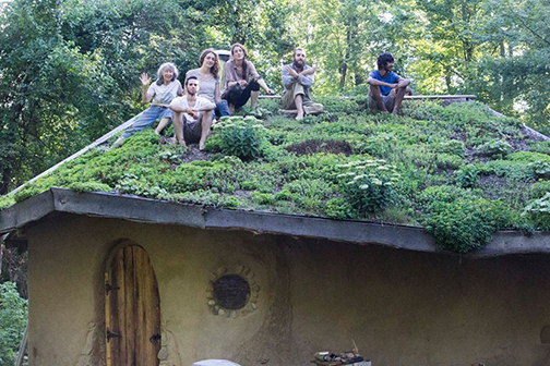 Interns on Hobbit Sauna Living Roof 2016 - Copy (2).jpg