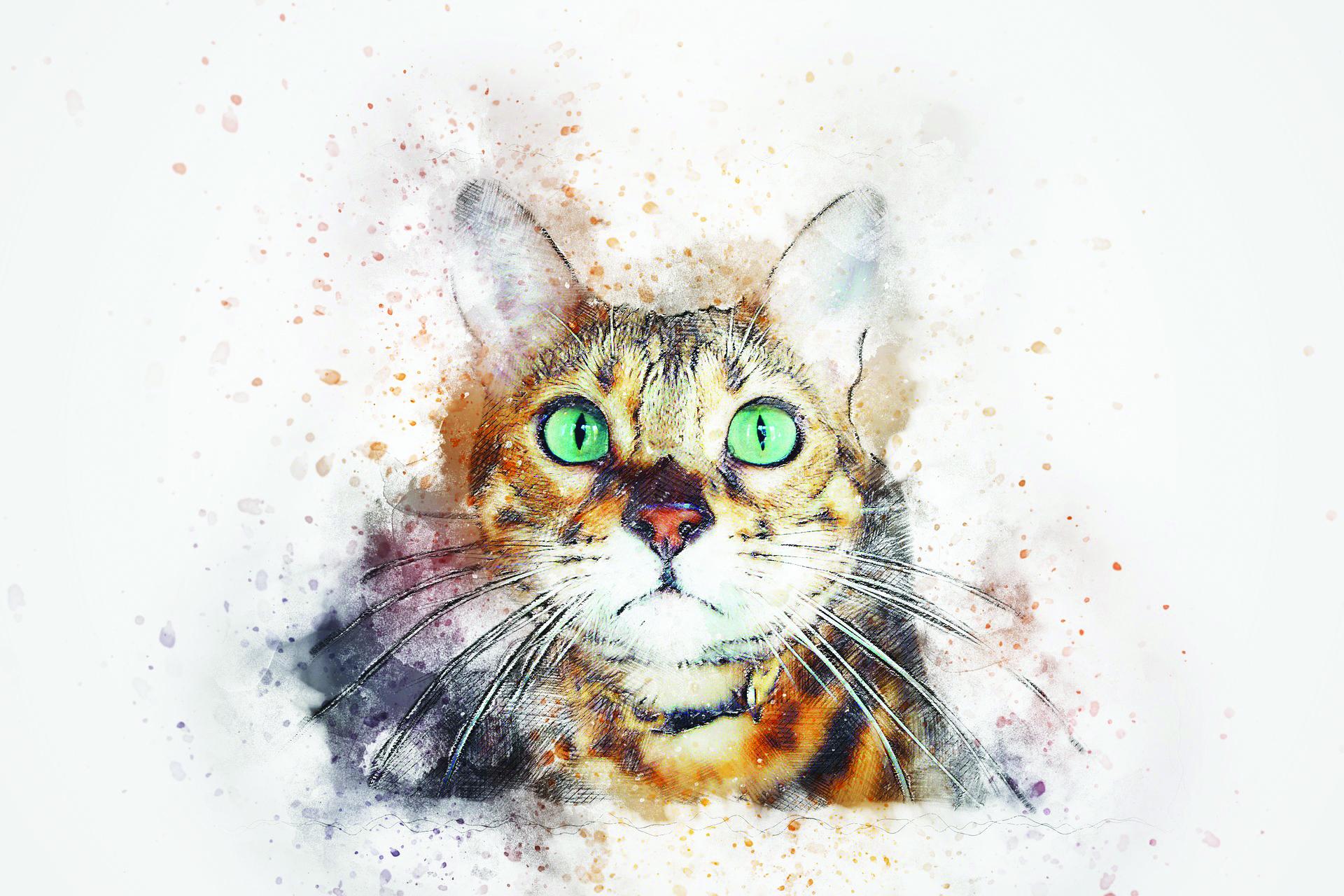 watercolor-cat.jpg