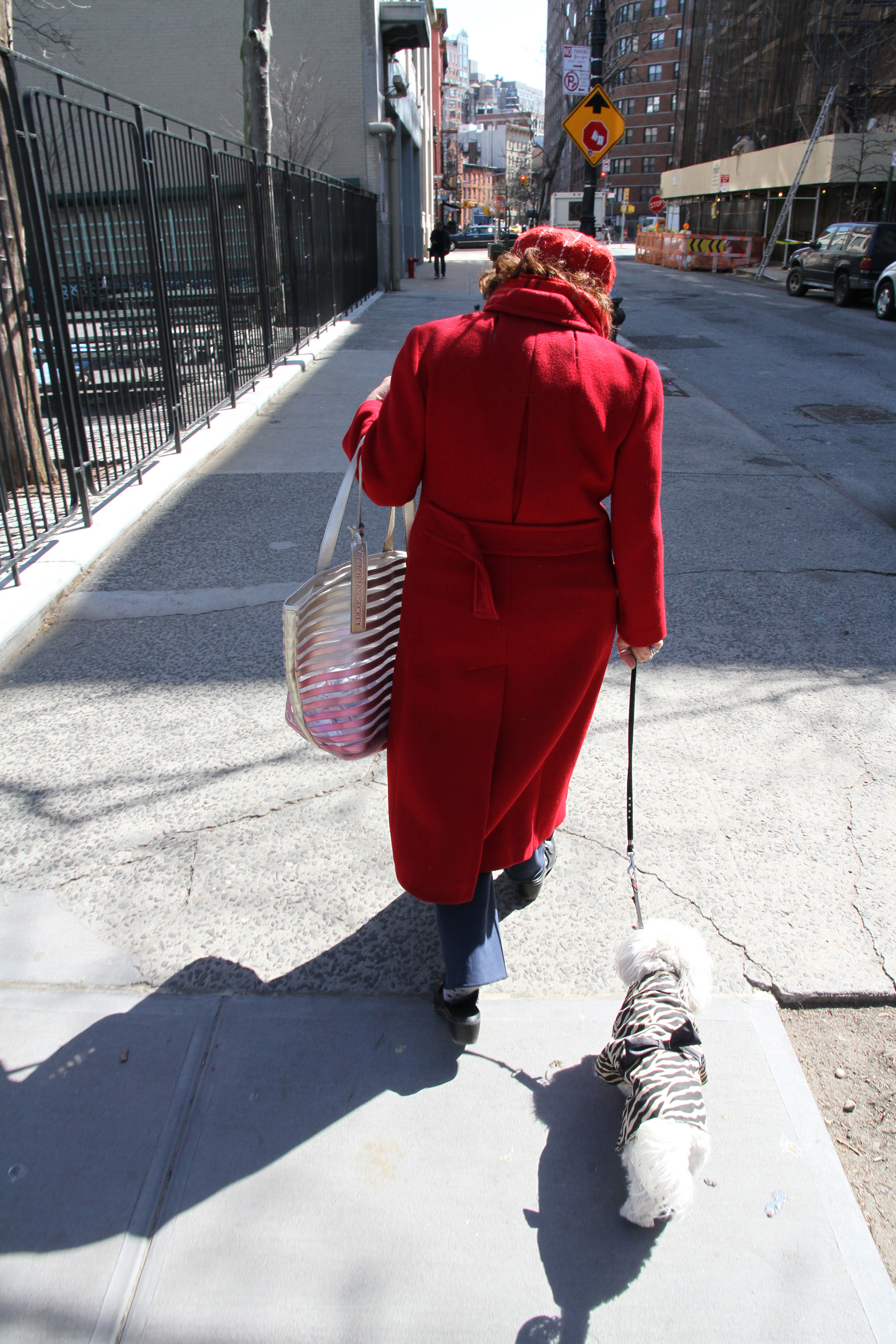 Walking the dog NYC