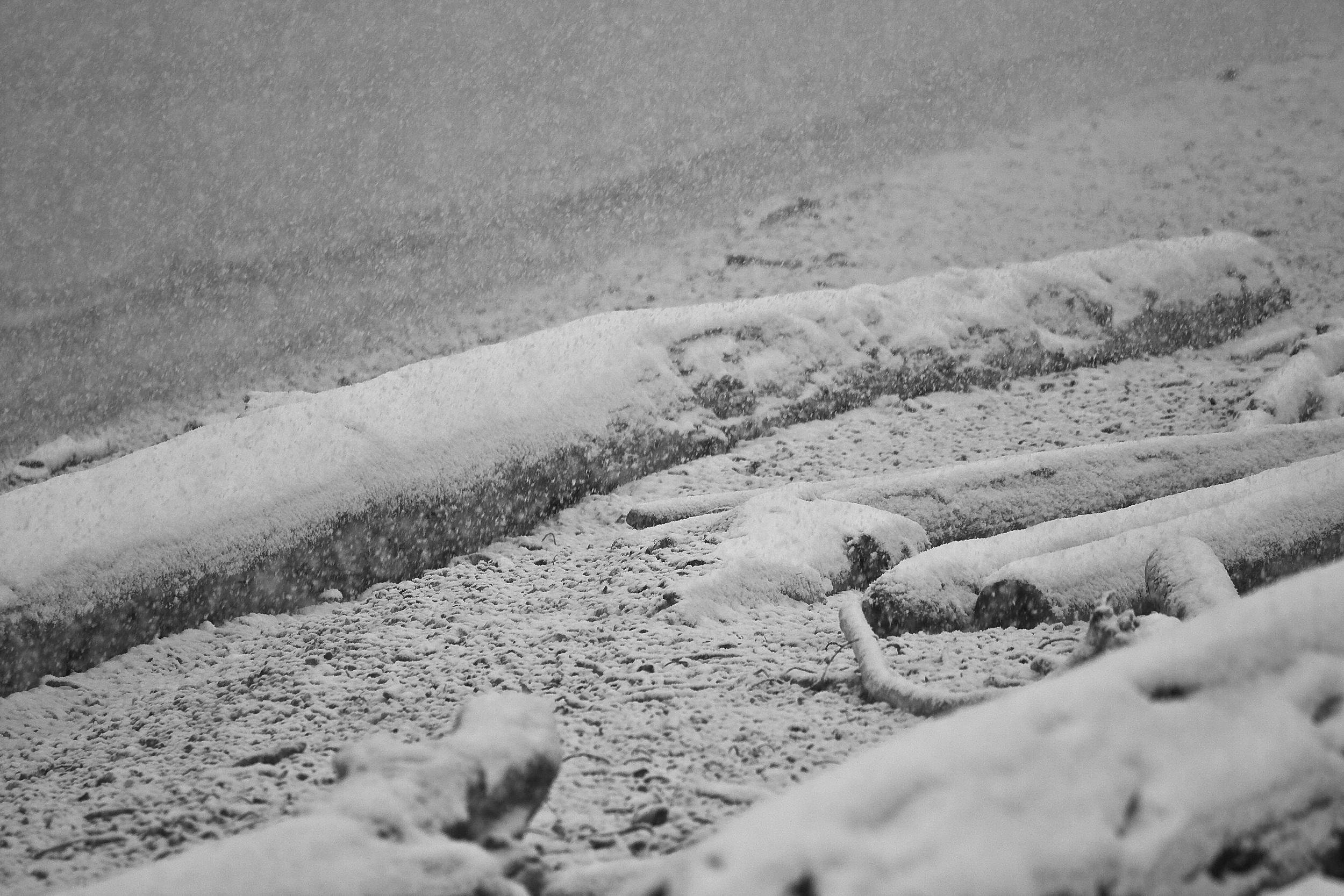 Winter, Salish Sea, B.C.