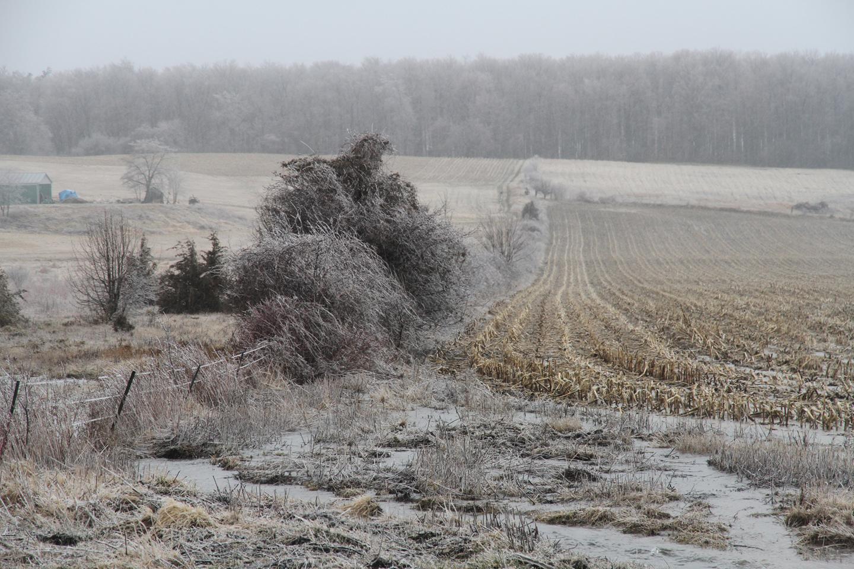 Ice Storm Ontario
