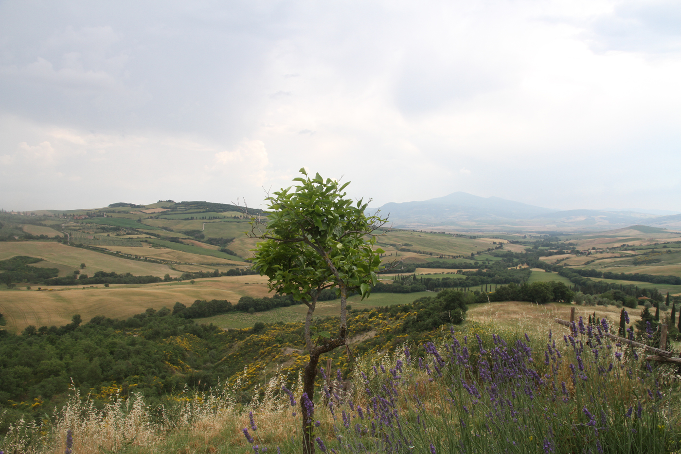 View from San' Antimo Tuscany