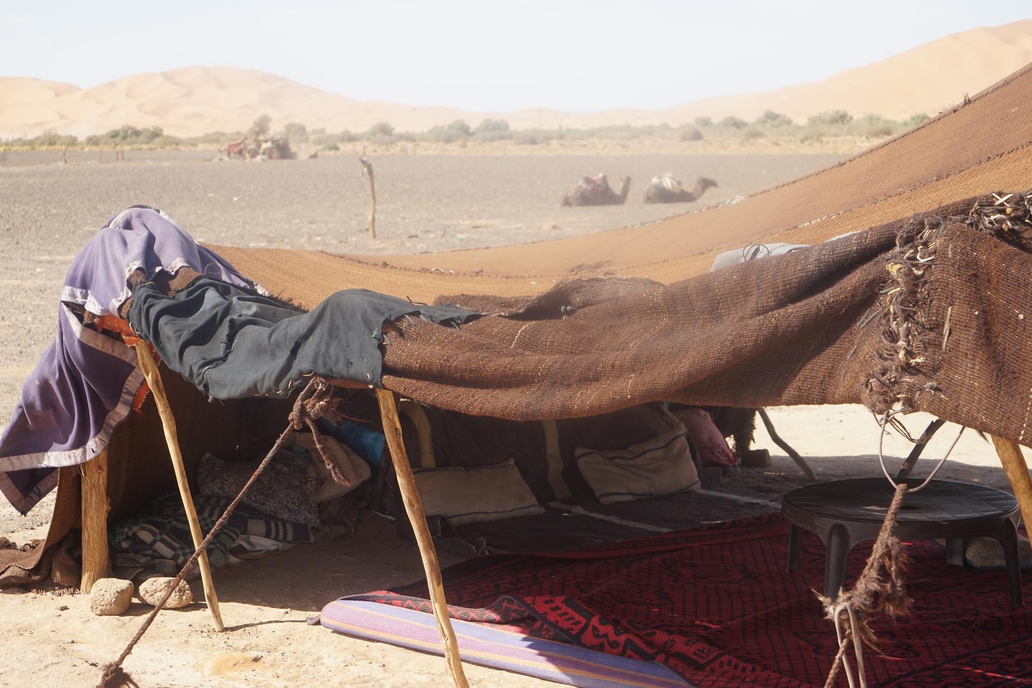Nomadic camp, Mazooga, Sahara,Morocco