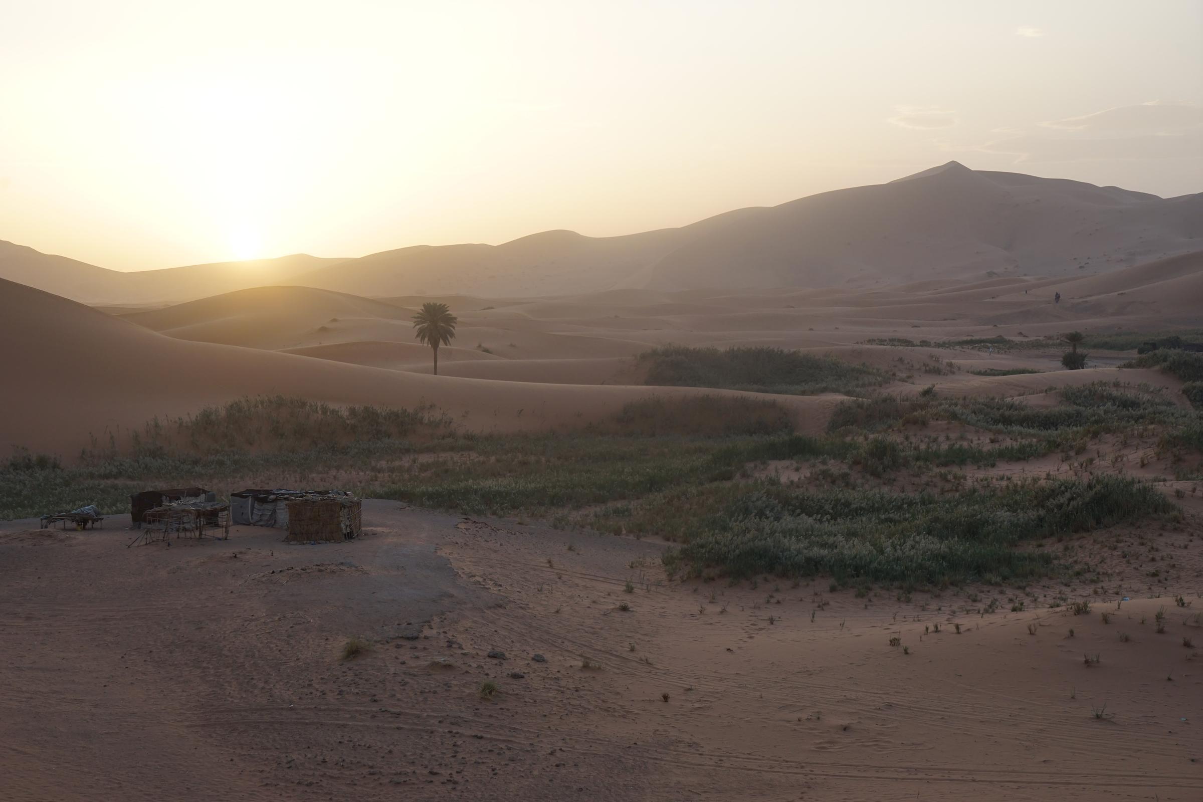 Sahara Camp, Morocco