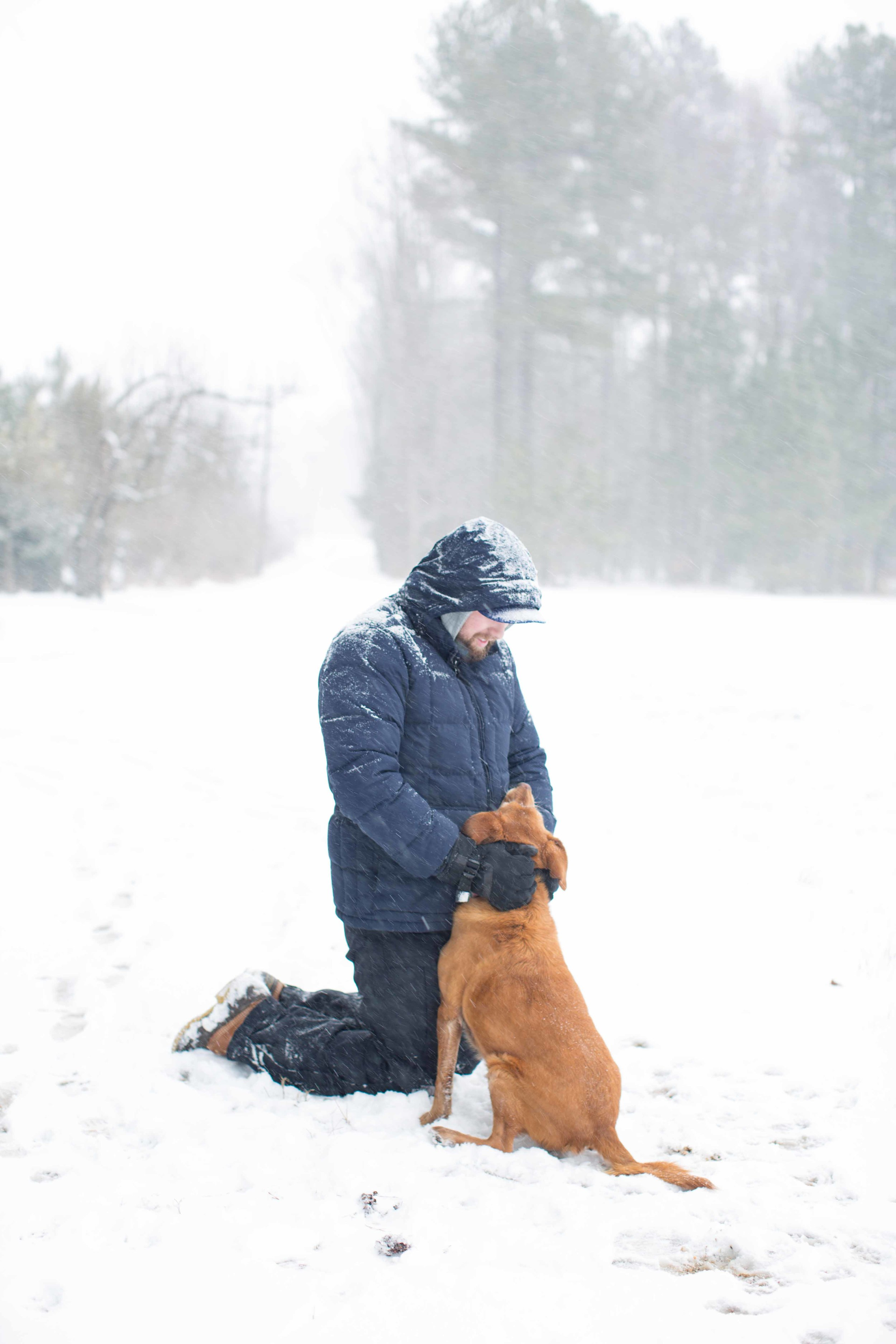 winter walk march 2014-060.jpg