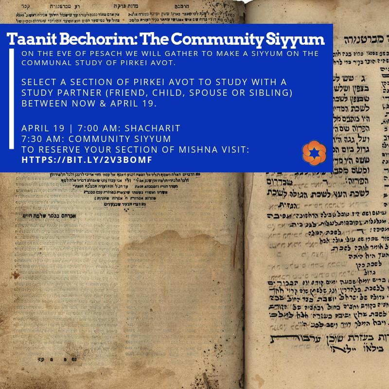 Taanit Bechorim Siyyum Program 4.19.png