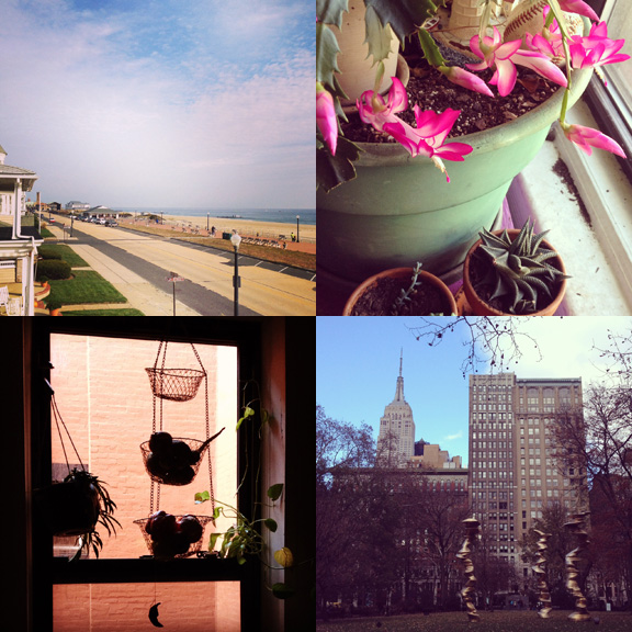 1) Down The Shore, the off season is the best. 2)This xmas cactus knows what time of yearit is. 3) Pottering about the house. 4) Rare visit to the city.