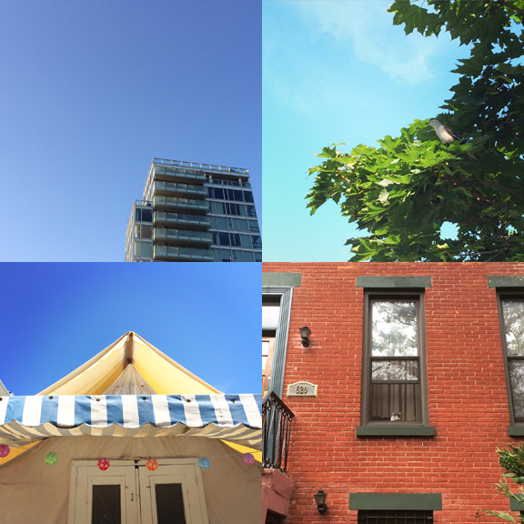 1) Bright blues in Prospect Heights. 2) A bird with bug in Asbury Park. 3) tent time in Ocean Grove.  4) Watchers and brick in South Slope.