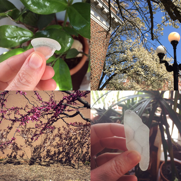 1) Little nugget. 2)Springtime in Ocean Grove. 3) All the Pinks in Asbury Park. 4) A safe shard.
