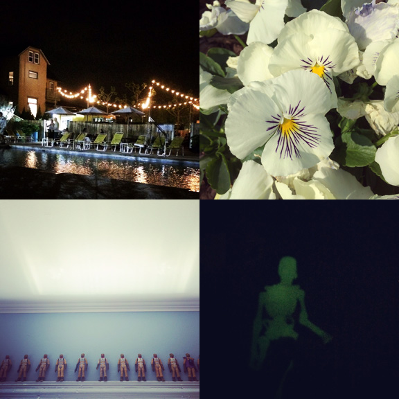 1) The pool at The Asbury Hotel; newly opened. 2) High Contrast in AP. 3) Ever expanding Bossk collection. 4) GITD ghoul.