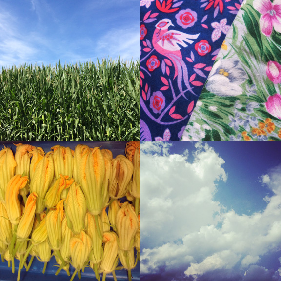 1) Atlantic Farms. 2) Thrift and vintage finds. 3) Blossom season at work. 4) Summer sky in overdrive.