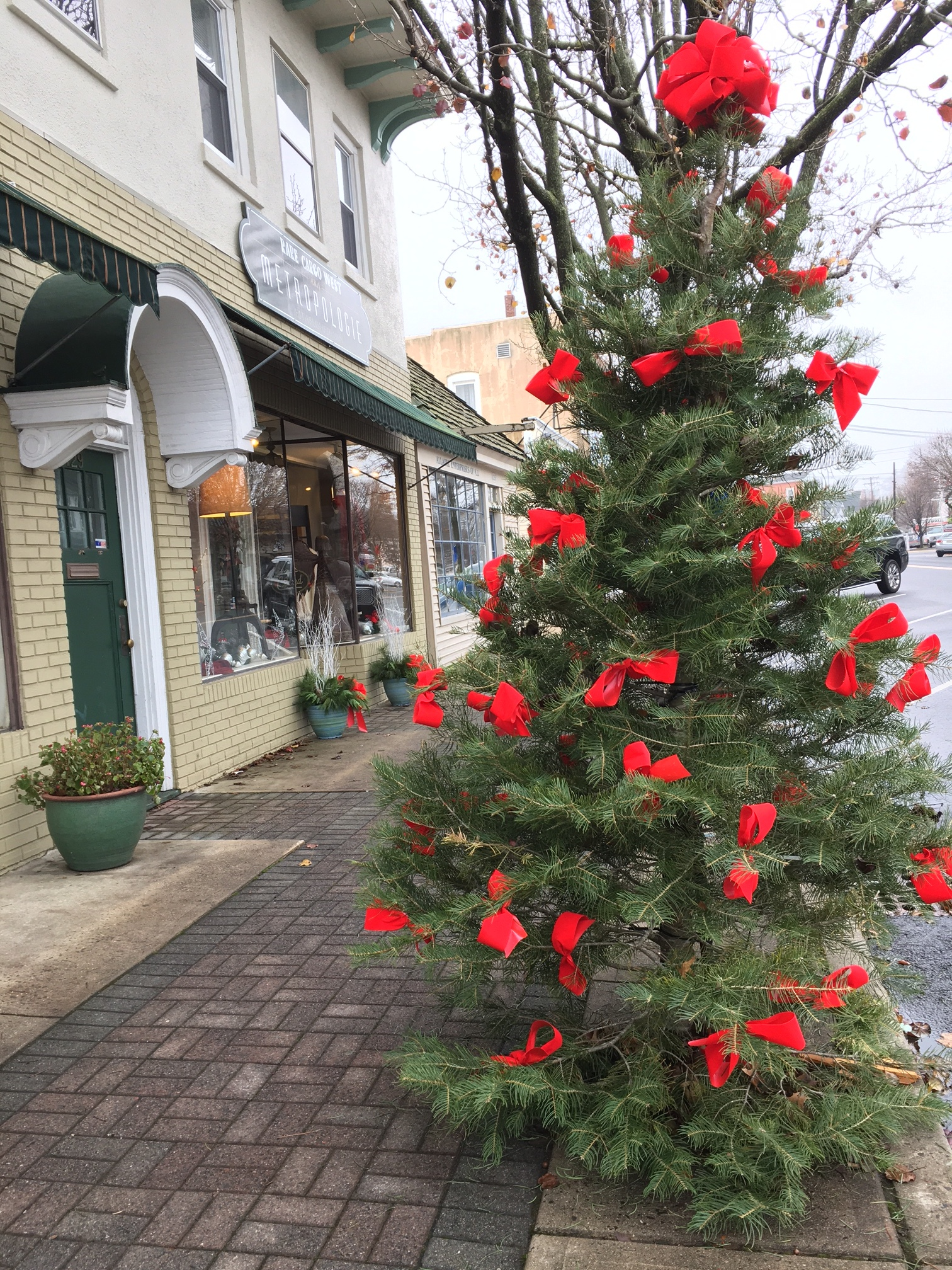 And of course there are xmas trees everywhere! Manasquan, NJ