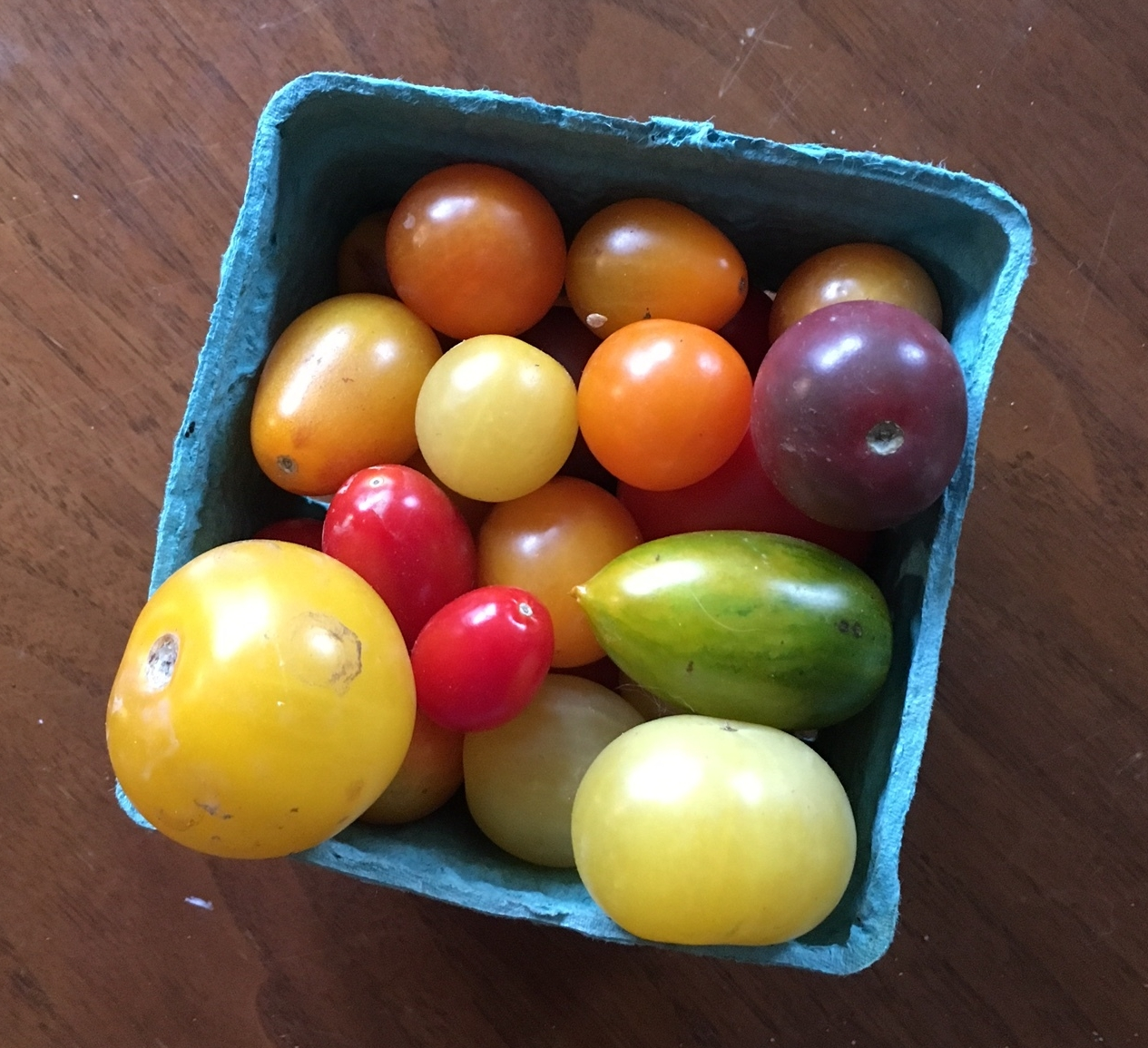 One of my favorite things this summer has been bringing delicious Jersey tomatoes home, either from local farm markets, or neighbor's yards. I like these cardboard containers, which I reuse or compost.