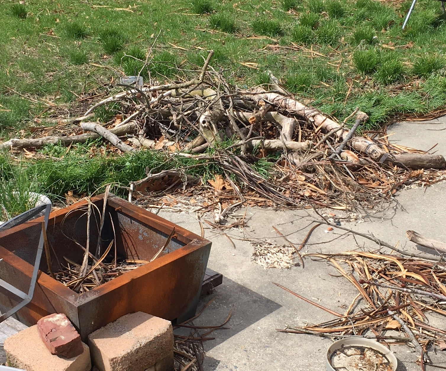 Right now we just have piles of firewood in various places in the yard, as it gets to be fire season, we will chop and organize our stash.