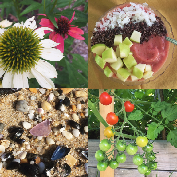 1) I still want my echinacea tattoo and every Summer is a reminder. 2) I'm smoothie bowl crazed again. 3) Purple at the beach... and 4) a rainbow of tomatoes.