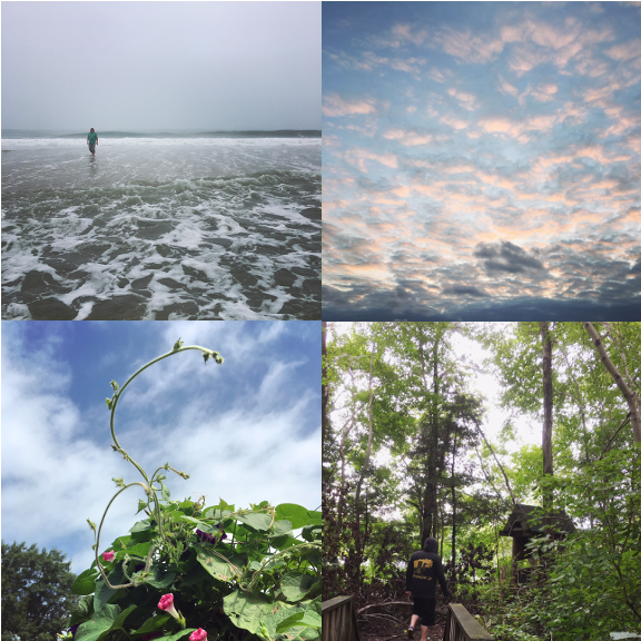 1) A rainy day in Bayhead, NJ. 2) The sky over Wesley Lake. 3) Backyard tendrils. 4) Exploring in Howell, NJ.