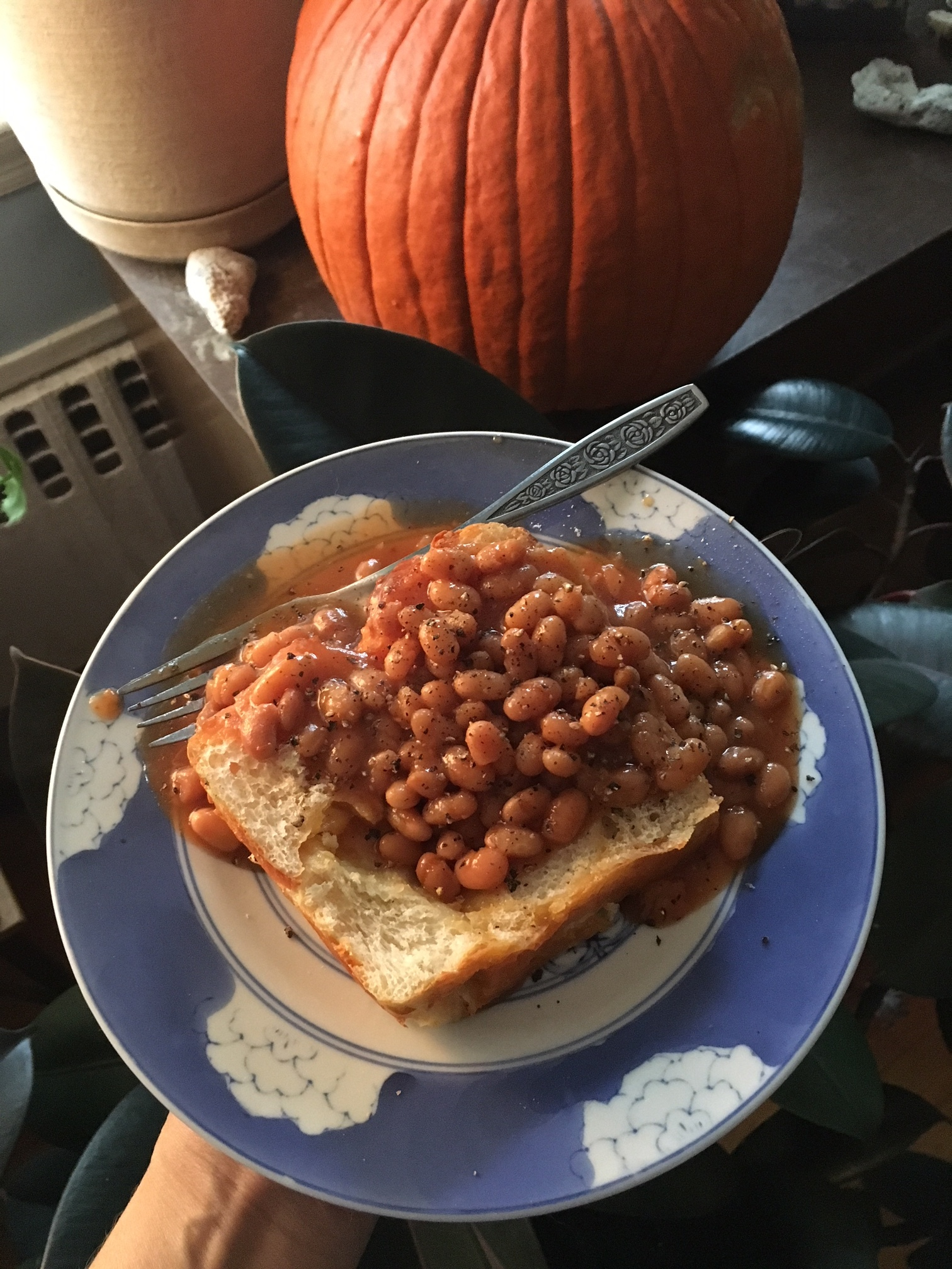 This is an example of a more processed meal I might eat. The cheese bread is made fresh daily at our local grocery store and the beans are vegetarian. Beans on toast is a favorite breakfast of mine but I only eat it once in a while.