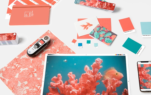 pantone-color-of-the-year-2019-living-coral-tools-graphics-packaging.jpg