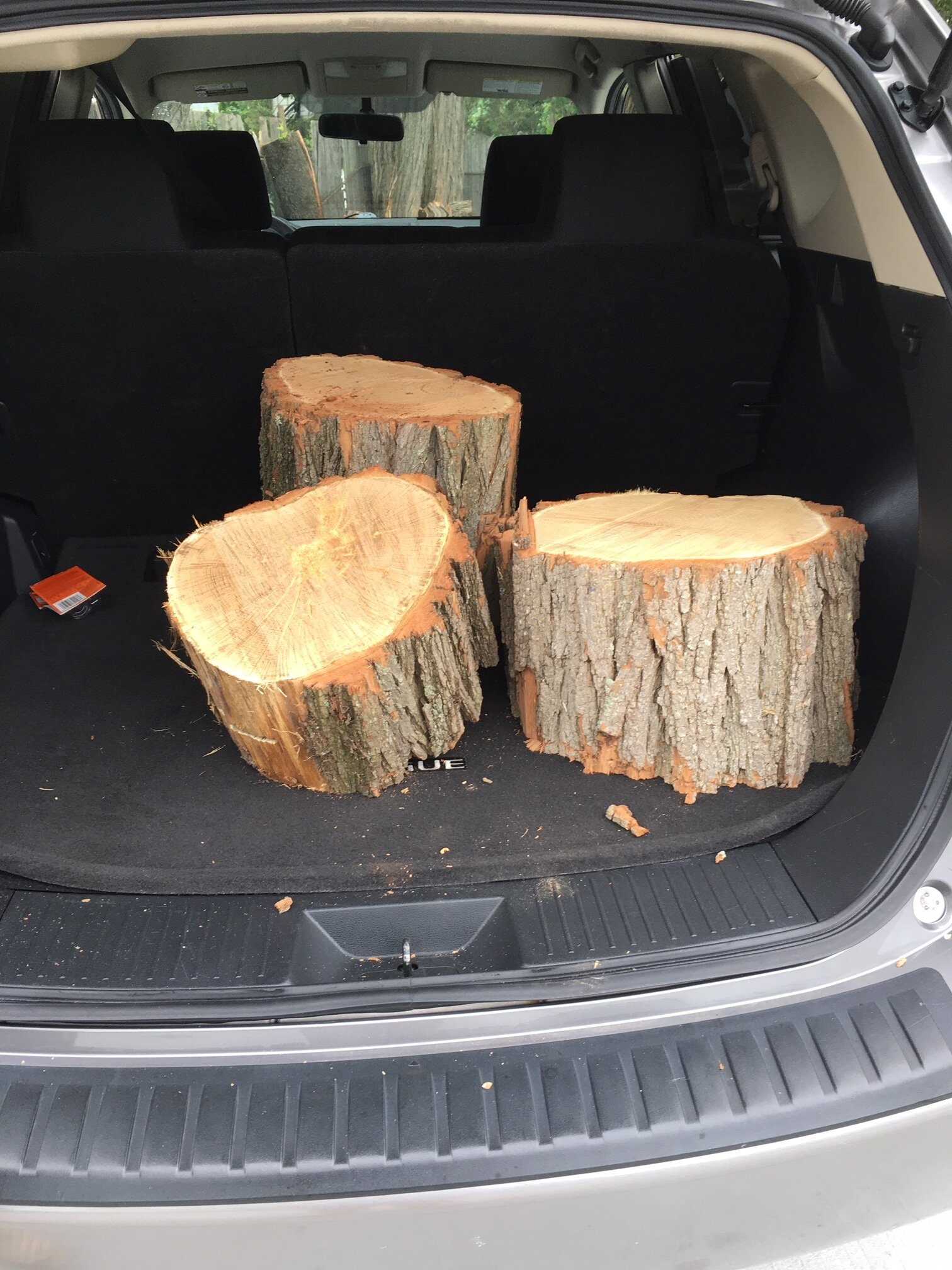 We broke in our new car with hauling some stumps home.
