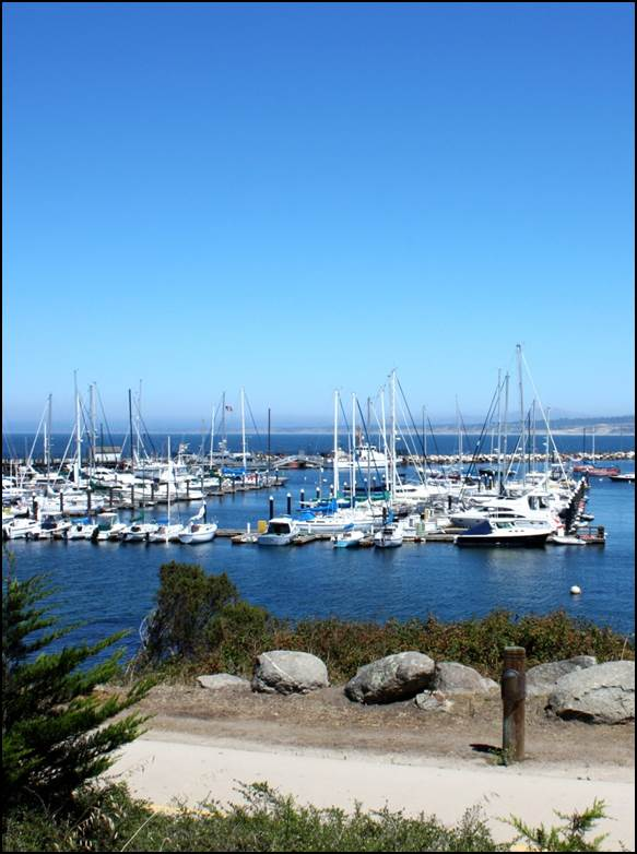 Monterey Bay Boatworks Dock Extension Project