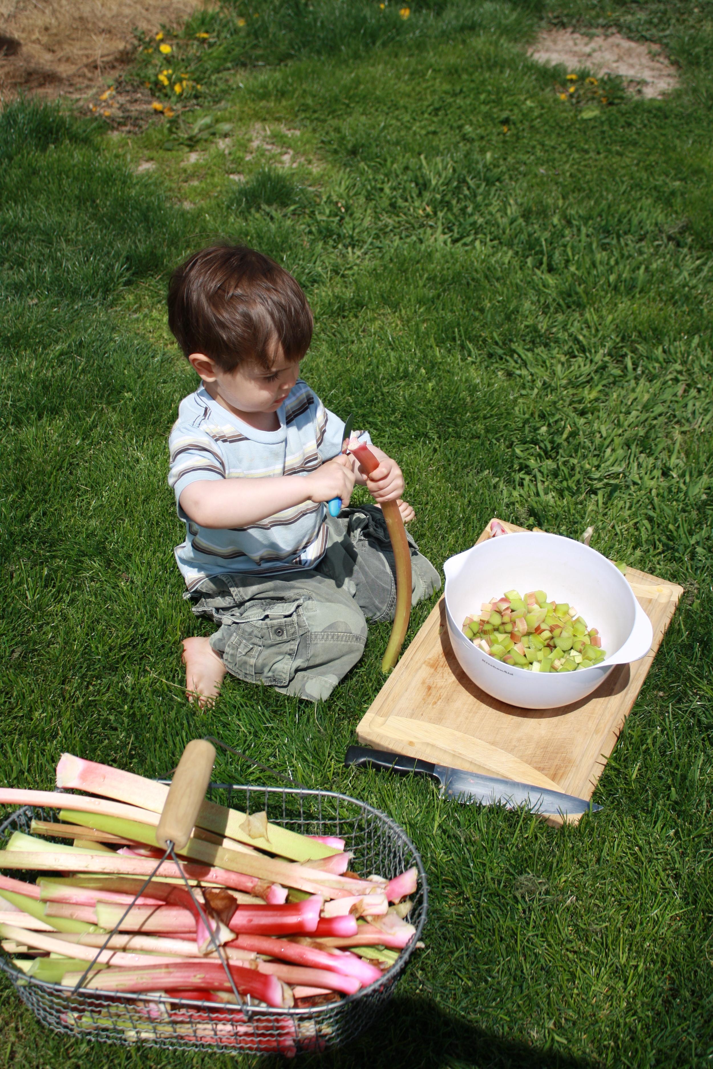 Clark at 2 helping me chop rhubarb for jam.
