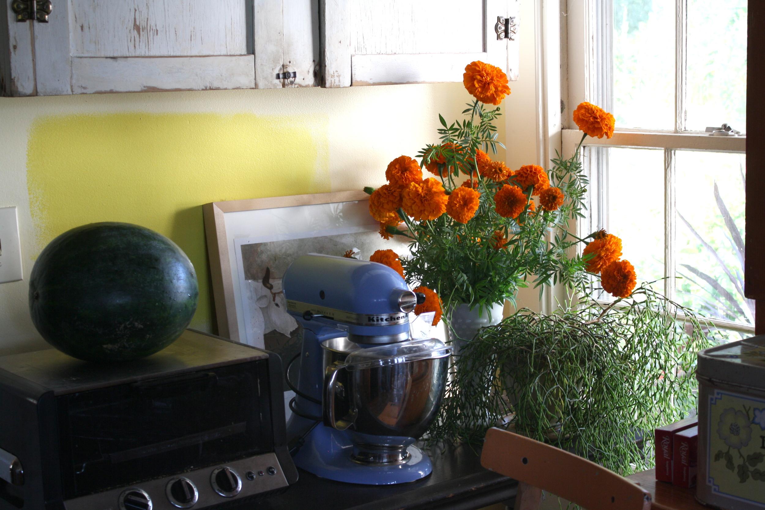 Now in vase