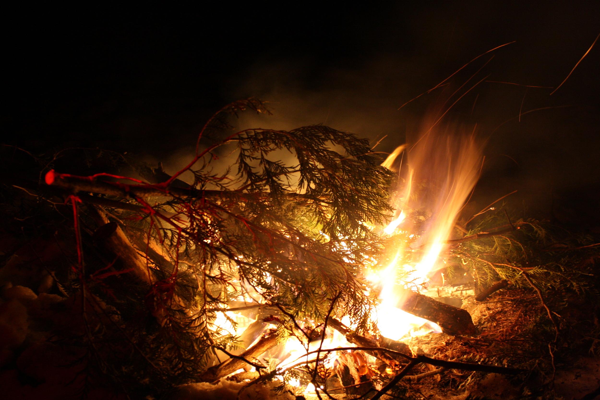 burningcedar.jpg