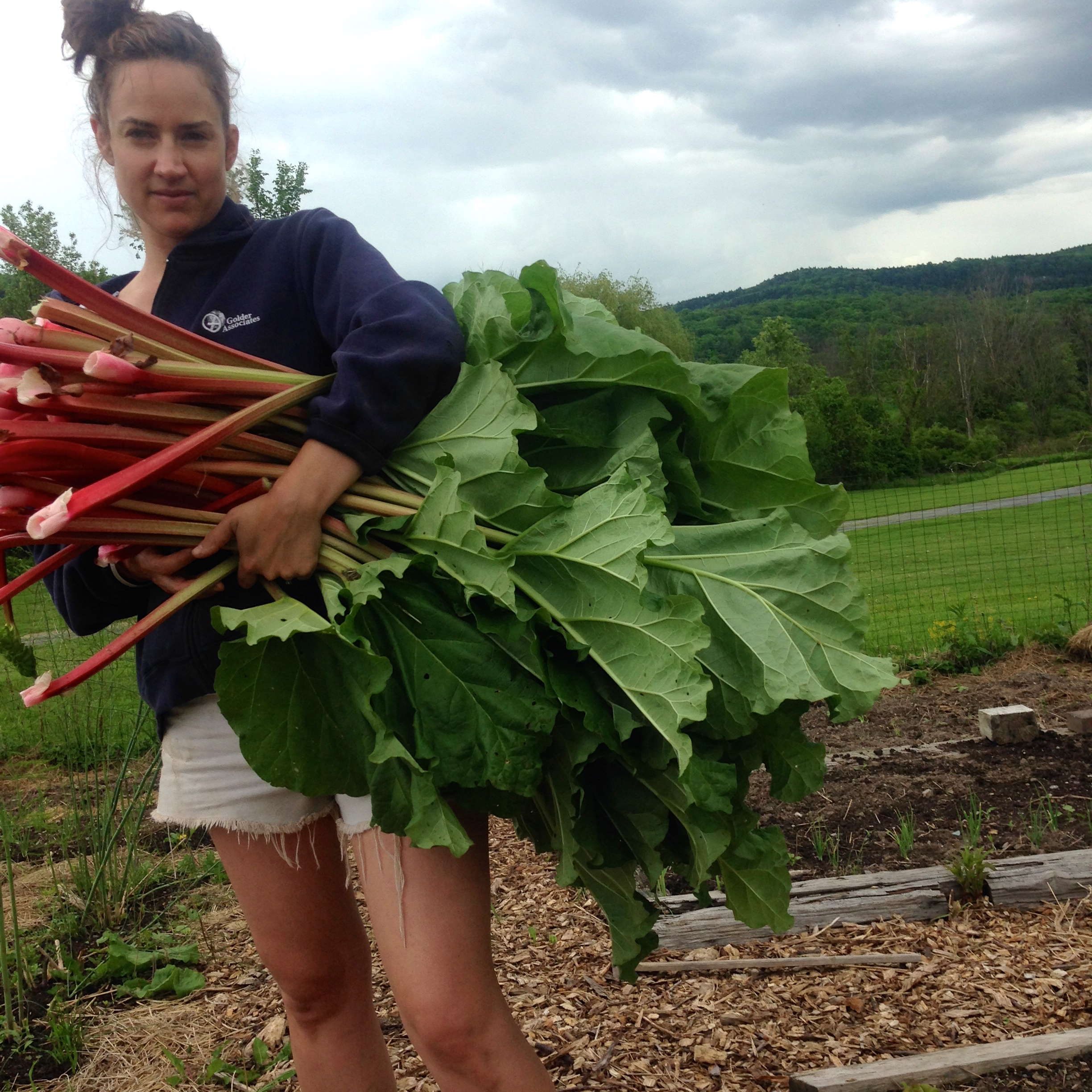 I look like what the cat drug in, as usual when gardening, but DAMN if my rhubarb ain't purty!