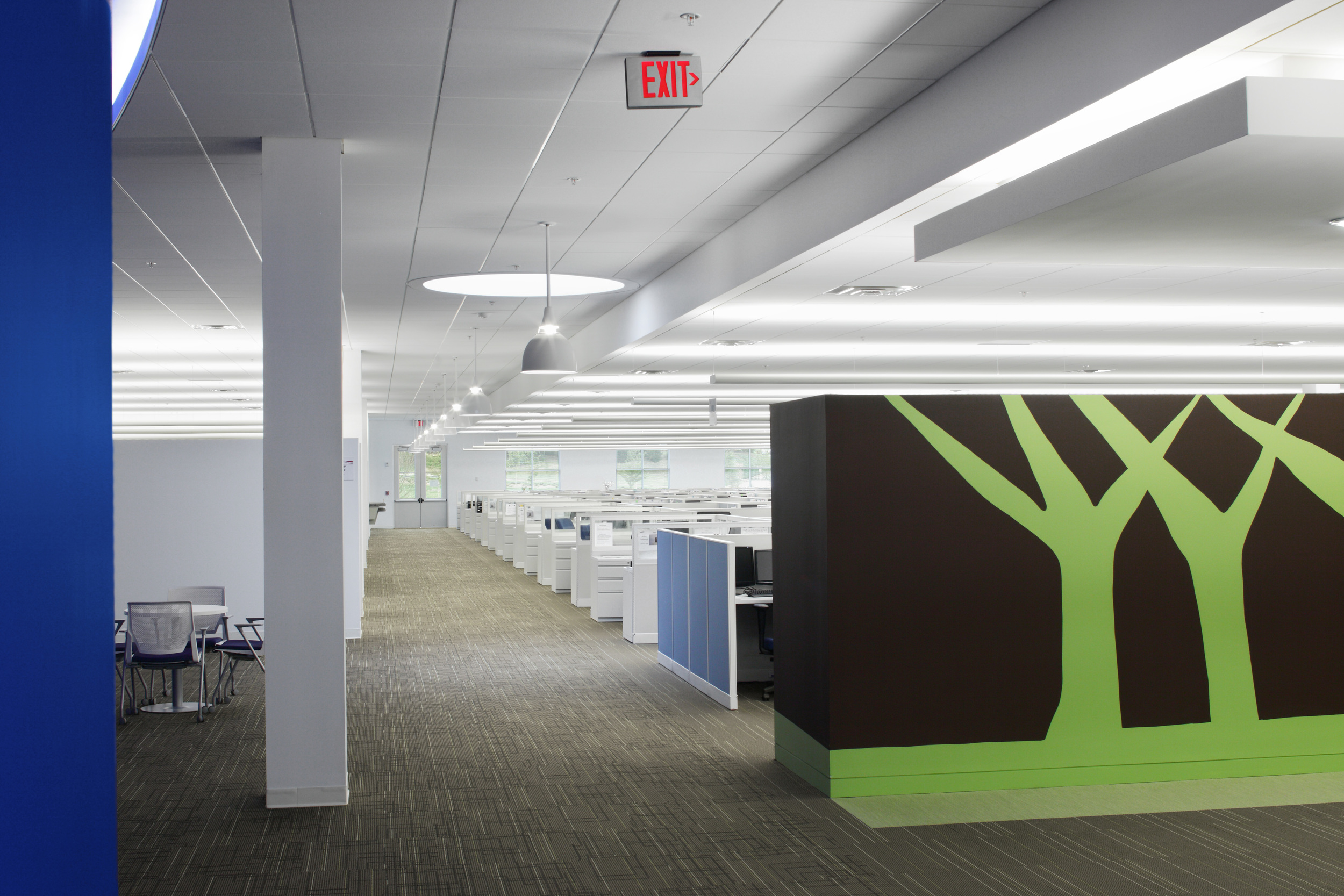 Samsung SC - Green Trees.jpg