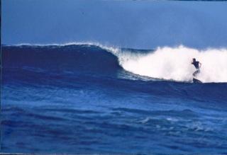 scott-young-Surfing-Costa-Rica.jpeg