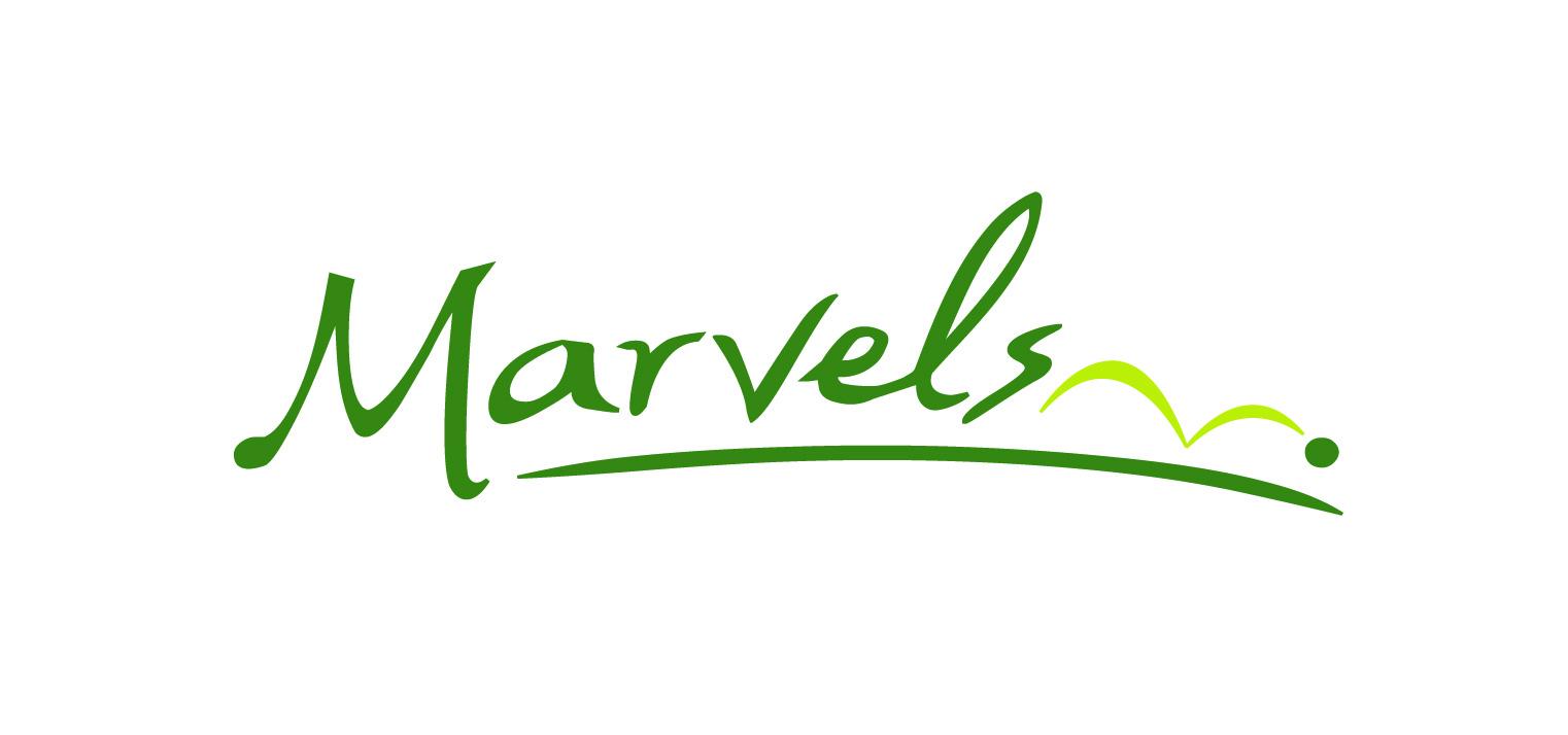 marvels logo.jpg
