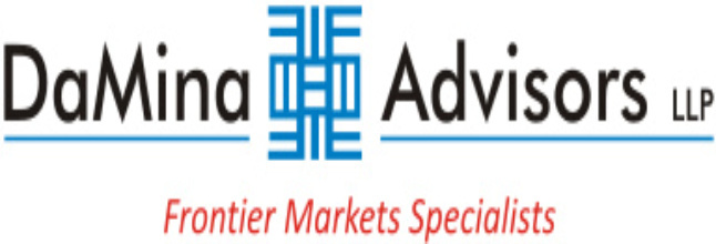 DaMina Advisors Logo-001.jpg