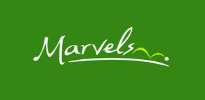 marvels.png
