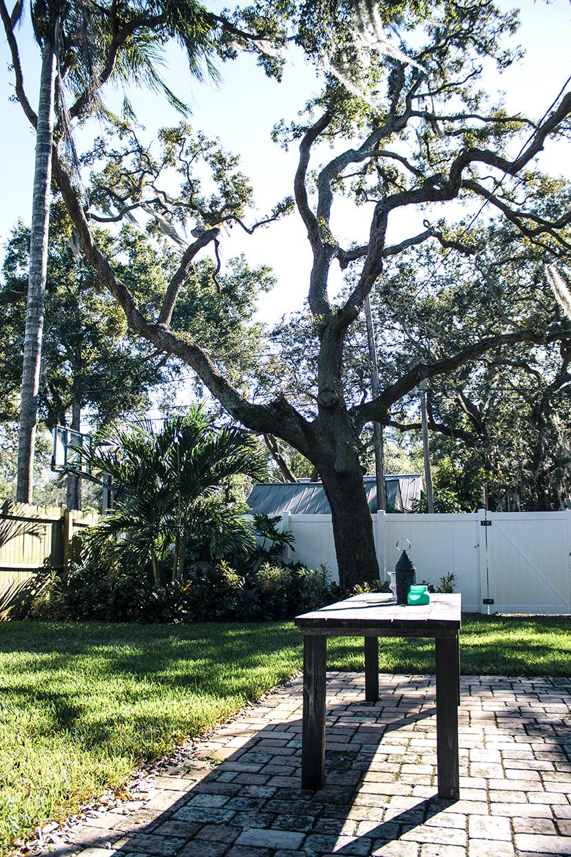 stpete-backyard.jpg