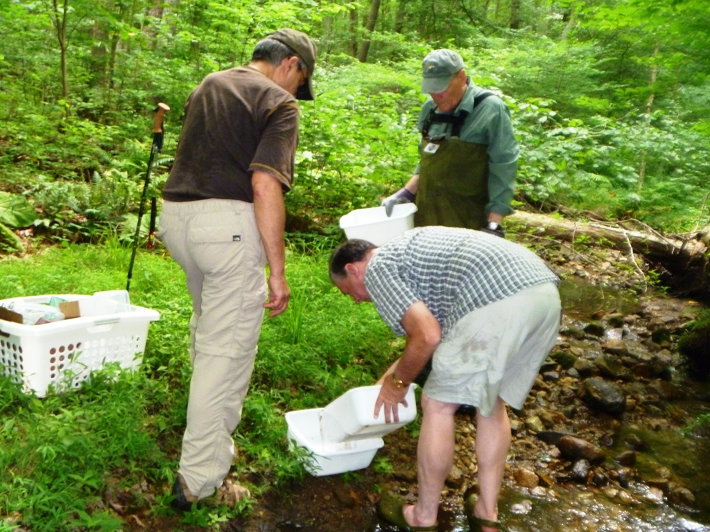 Don, Jeff and Cliff hard at work sampling Kurtnebachs brook for life as part of the study to determine whether the brook is suitable for brook trout reproduction.
