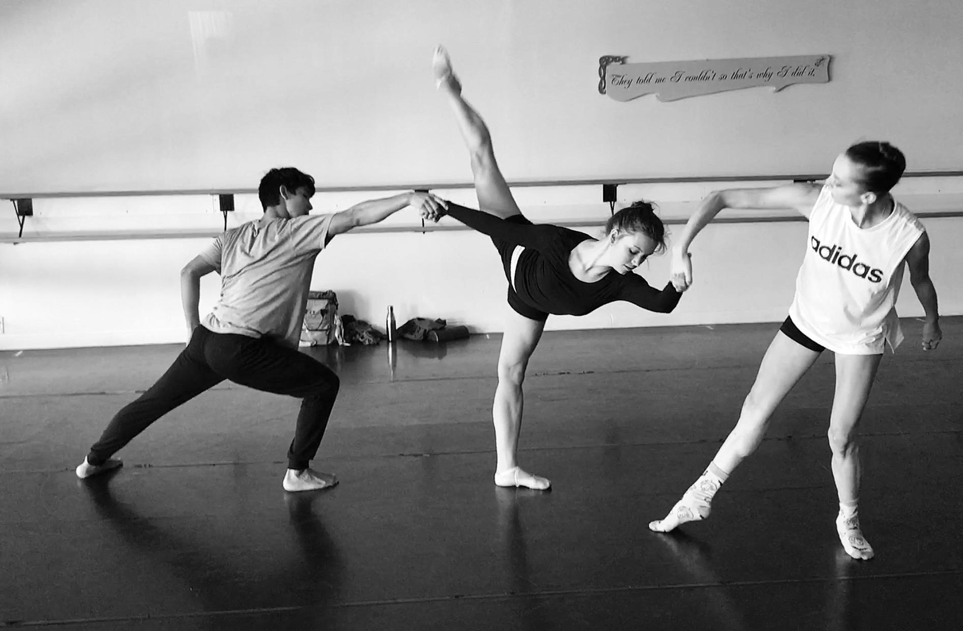 APEX: a (Killer) Whale Ballet