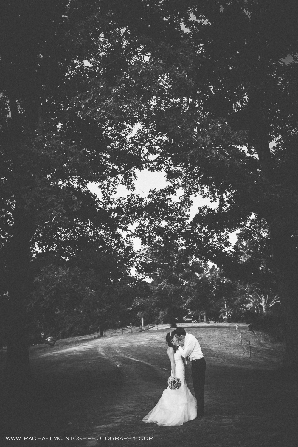 Asheville Wedding Photographer-Crest Center Wedding-Erin & Brian's Biltmore Wedding -52.jpg