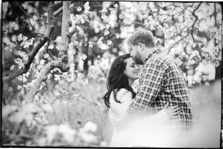Spring Engagement Session-Asheville Wedding Photographer 2.jpeg
