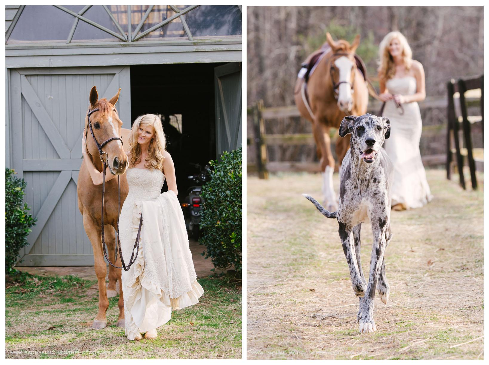 NC Wedding Photography - Bridal Portrait Session